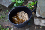 Preparing to boil mulberry bark by Marie Anna Lee