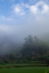 Fog obscuring mountain by Marie Anna Lee
