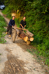 Men with logs by Marie Anna Lee