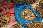 Dried herbs by Marie Anna Lee