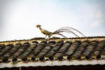 Animal ornament on rooftop of bridge by Marie Anna Lee