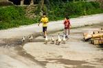 Kids herding ducks by Marie Anna Lee