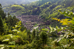 Village from above by Marie Anna Lee