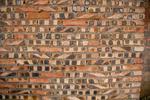 Brick wall by Marie Anna Lee