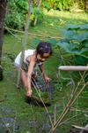 Picking algae by Marie Anna Lee