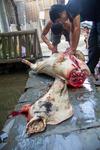 Cutting a pig carcass open by Marie Anna Lee