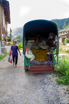 Asian pears being sold from truck by Marie Anna Lee