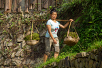 Woman carrying algae in buckets by Marie Anna Lee