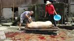 Preparing slaughtered pig