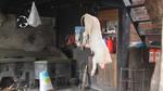 Hanging pig carcass