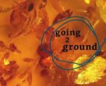 going2ground by University of the Pacific