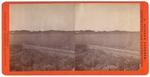 Stockton: (Field, road, barn in distance.)