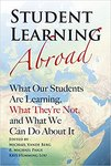 Anthropology, Intercultural Communication, and Study Abroad by Bruce La Brack and Laura A. Bathurst